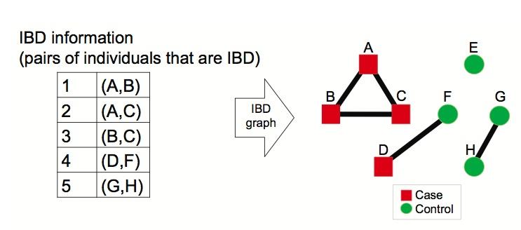 ibd-figure